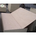 Popar Plywood sheet 18mm