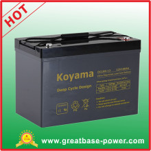 Top Quality 100ah 12V AGM Deep Cycle Marine Battery Motor Home Battery