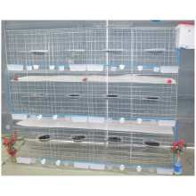 Pigeon Breeding Cage 3 Layers Can Fit 24 Birds With Pigeon Accessories For Sale