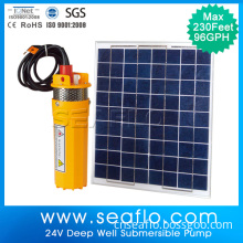 Seaflo Solar Powered Irrigation Water Pump
