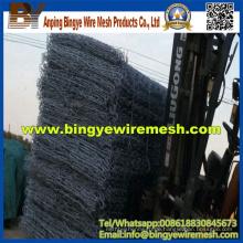 Gabion Box und Heavy Hexagonal Wire Nettings (24 Jahre Fabrik)