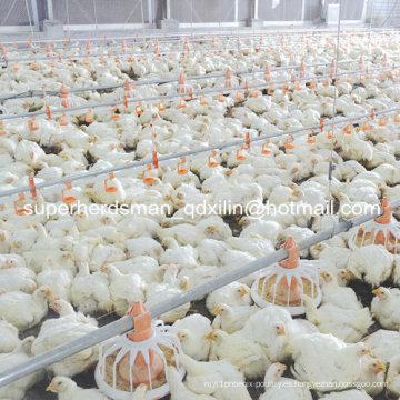 Equipos de la granja de aves de corral para pollos de engorde