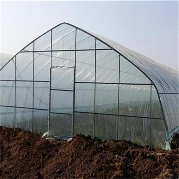 Сельское хозяйство Single Tunnel Plastic Film Greenhouse