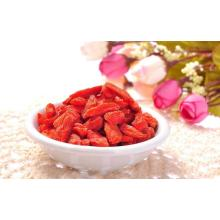 Baga de Goji orgânica certificada doce do animal