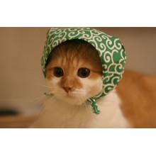 Nach Maß niedliche Baumwollkatze Haustierhündchen Bandana