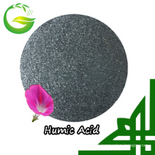 Humic Acid Chelated Manganese Fertilizer for Agriculture