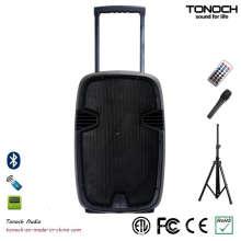 OEM 12 polegadas plástico Trolley PRO Audio com bateria