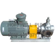 Pompe à engrenages d'huile de lubrification approuvée par la CE YCB30