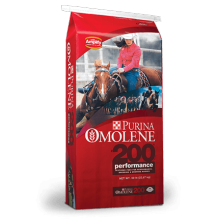 حقيبة تغليف Racehorse Feeds