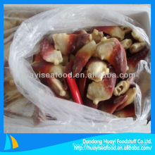 High quality and fresh frozen arctic surf clam