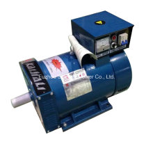 St Series Single Phase Brush Dynamo 220V Price