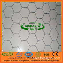 Innaer 24 Years Factory Supply Chicken Netting for Export