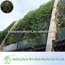 10 cm Mesh Opening Stainless Steel Plant Climb Wall Mesh