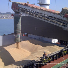 Ship Loading Equipment for Mining Powder