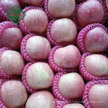 chinois frais rouge fuji pomme pomme fraîche