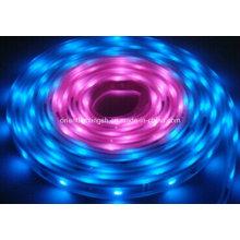 SMD 5060 Artificial Intelligent Flexible Strip Pixel Chasing LED Strip Light