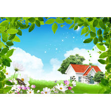 Clear And Elegant Non - Woven Cloth Fabirc Countryside Landscape Art, Wall Decor Paintings