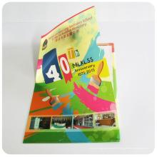 Support de fichier PP en plastique personnalisé (dossier de pochette de fichiers)