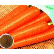 Extrait de plante naturelle Extrait de radis en poudre avec 1% à 98% de bêta-carotène