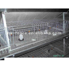 Cheap pigeon cage/chicken cages/poultry cages