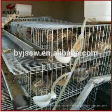 Cage d'élevage de cailles en métal de prix usine pour la vente Philippines