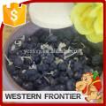 first class quality / dried style black goji berry