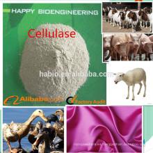 enzima celulasa (8,000-25,000U / g)