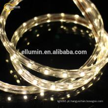 luz morna conduzida da luz de tira 12v com certificado de CE & ROHS