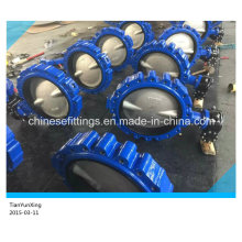 CF8m Disc EPDM Two/Double Stem Lugged Butterfly Valve