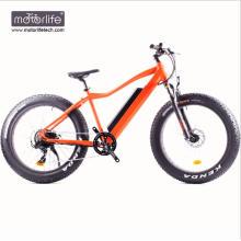 Electric bike 48V1000W Hot sale electric fat bike with 8fun mid drive motor