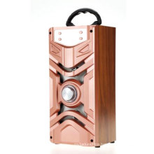 Professional Support USB/ SD card slot playback/ Bluetooth karaoke trolley subwoofer speaker