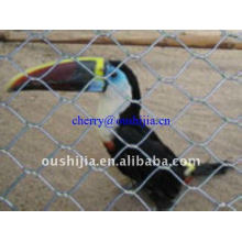 Aviary Mesh en acier inoxydable (usine)