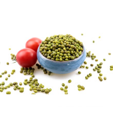 Green Mung Bean (Prime quality dried),sprouting grade mung beans,mung beans for sprouting
