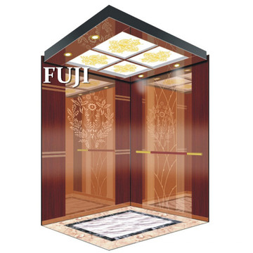 Safe and Comfortable Passenger Elevator/Lift