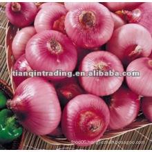 chinese fresh yellow red onion