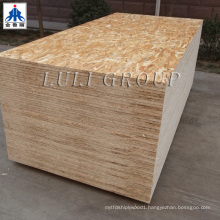 15mm /18mm OSB Board for Construction Usage