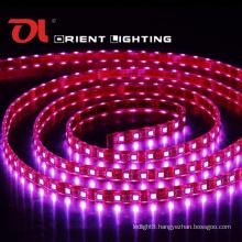 SMD 5060 High Power Flexible Strip-60 LEDs/M IP67