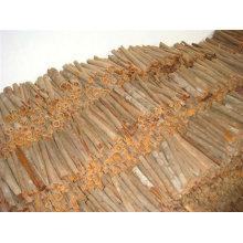 Gewürze & Kräuter Produkte Chinesische Cassia Zimt / Tube / Ganze