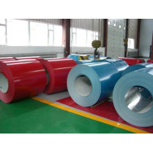 Color Coated Steel Coil/Sheet