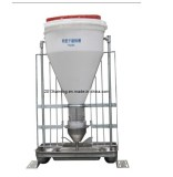 Automatic Dry Wet Pig Feeder