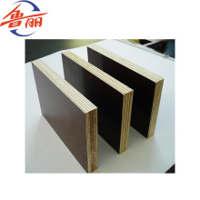 El edificio y la construcción usan madera contrachapada con película