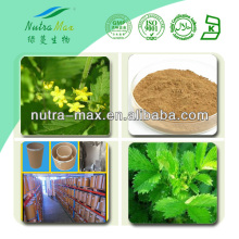 Nutramax Supply-Natural Agrimonia Pilosa Extract Powder 4:1 5:1 10:1