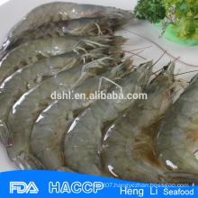 HL002 shrimp exporters whole vannamei shrimp