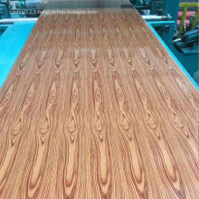 Prepainted GI  ppgi roofing sheet ppgi coils