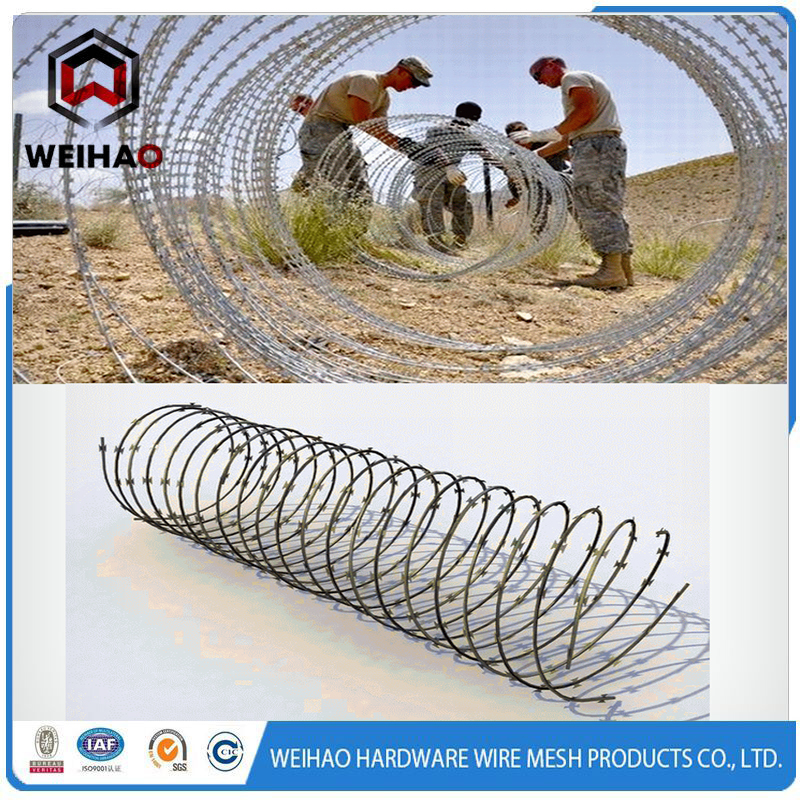 Low price concertina razor barbed wire / barbed wire fence