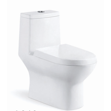 Double Hole Super Swirling One Piece Toilet