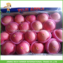 Export Red Apple/Apple/Fresh Apple/Grade A Fuji Apple With High Quality