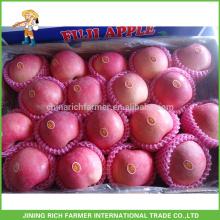 Exportação Apple vermelho / maçã / Apple fresco / grau A Apple Fuji com alta qualidade