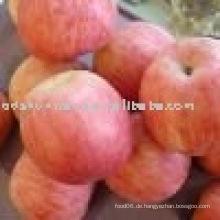 Liefern chinesischen fuji Apfel mit hoher Qualität