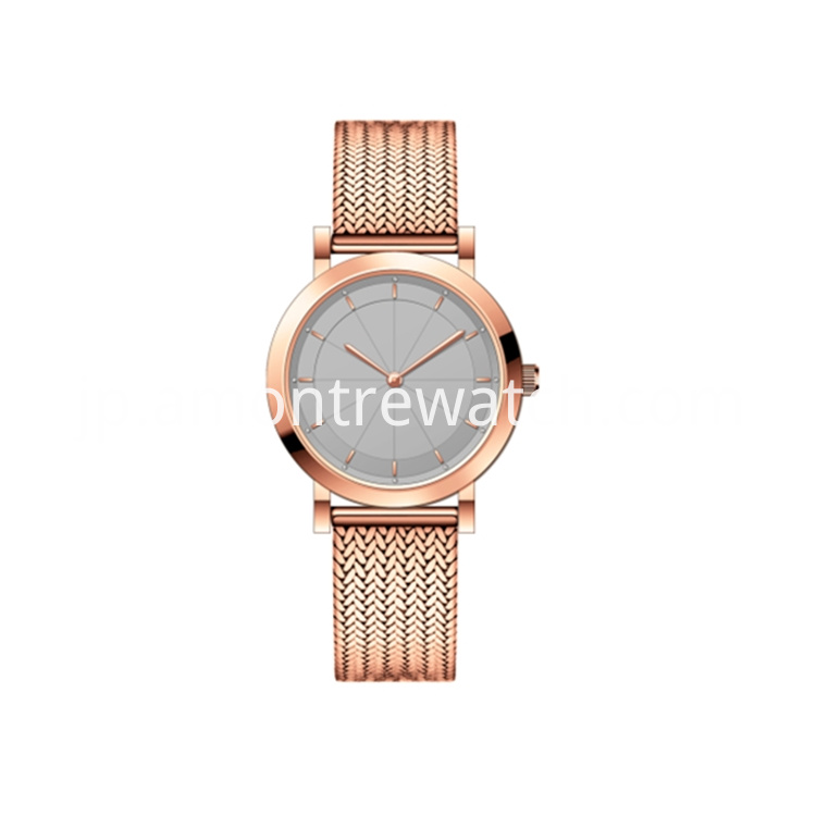 Girl S Rose Gold Mesh Band Watch